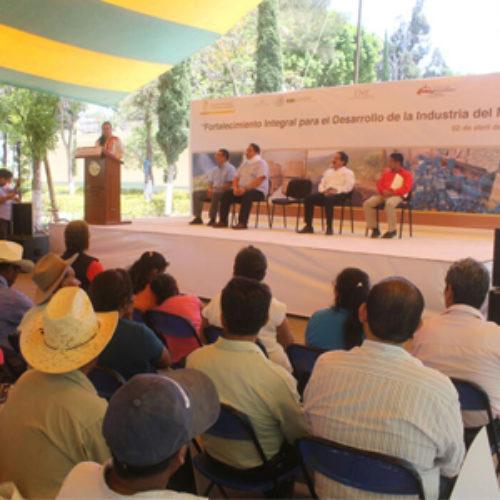 Con inversión de 92 MDP, STyDE fortalece la industria del mezcal en Oaxaca