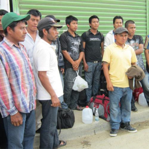 Apoya IOAM a oaxaqueños para retornar a sus comunidades de origen