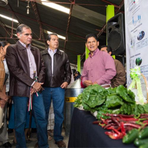 Crece Oaxaca 15.7% en producción de carne de ganado bovino: Gabino Cué